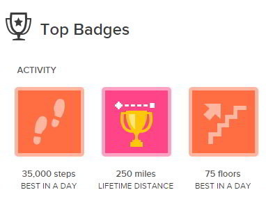 My Current Fitbit Badges