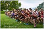 Photos: JV Boys - Start - 2014 MCC District Cross Country Meet