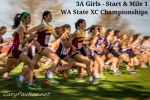 3A Girls - Start & Mile 1 - WA State XC Championships